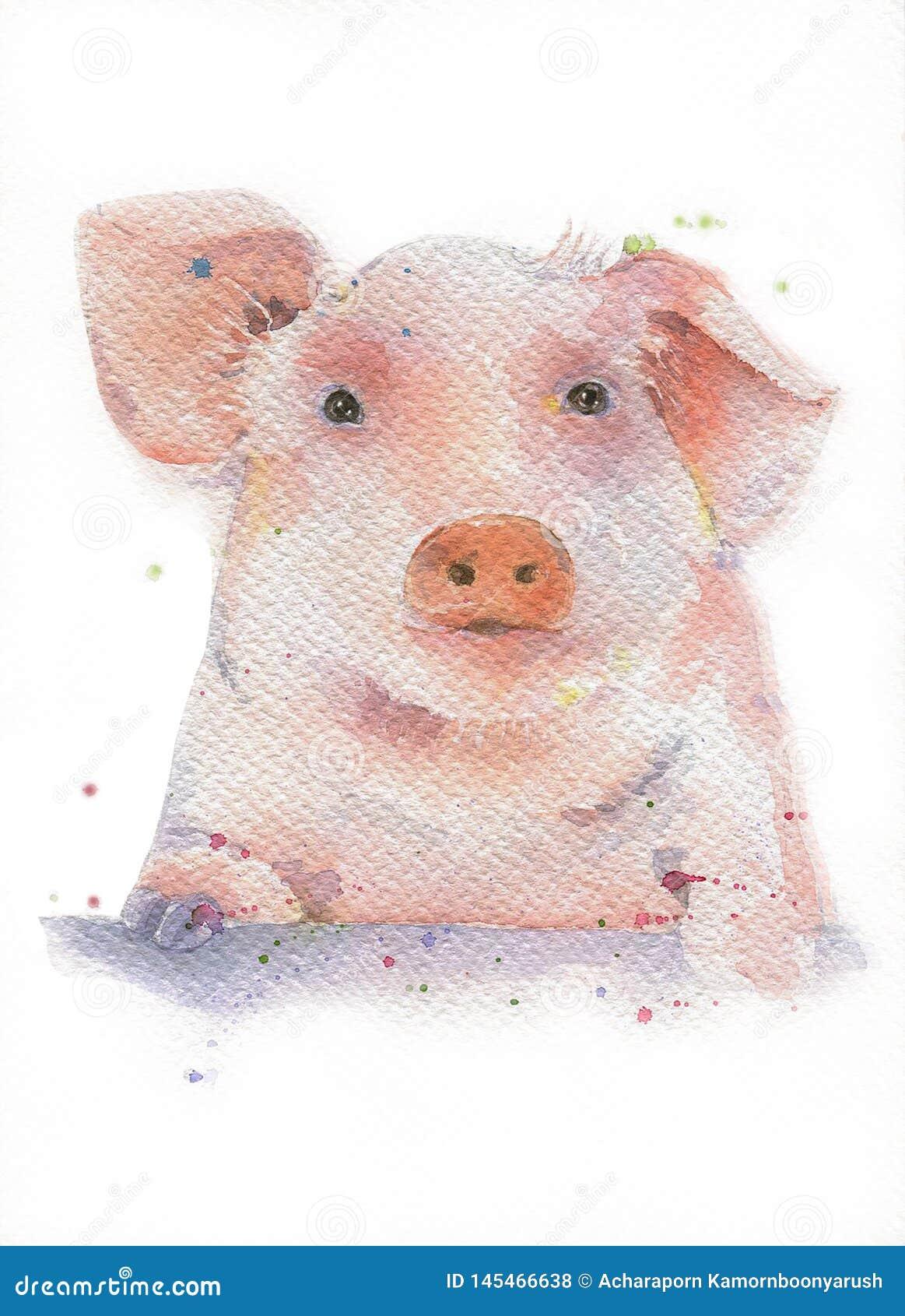例证-水彩手拉的猪头被绘的剪影