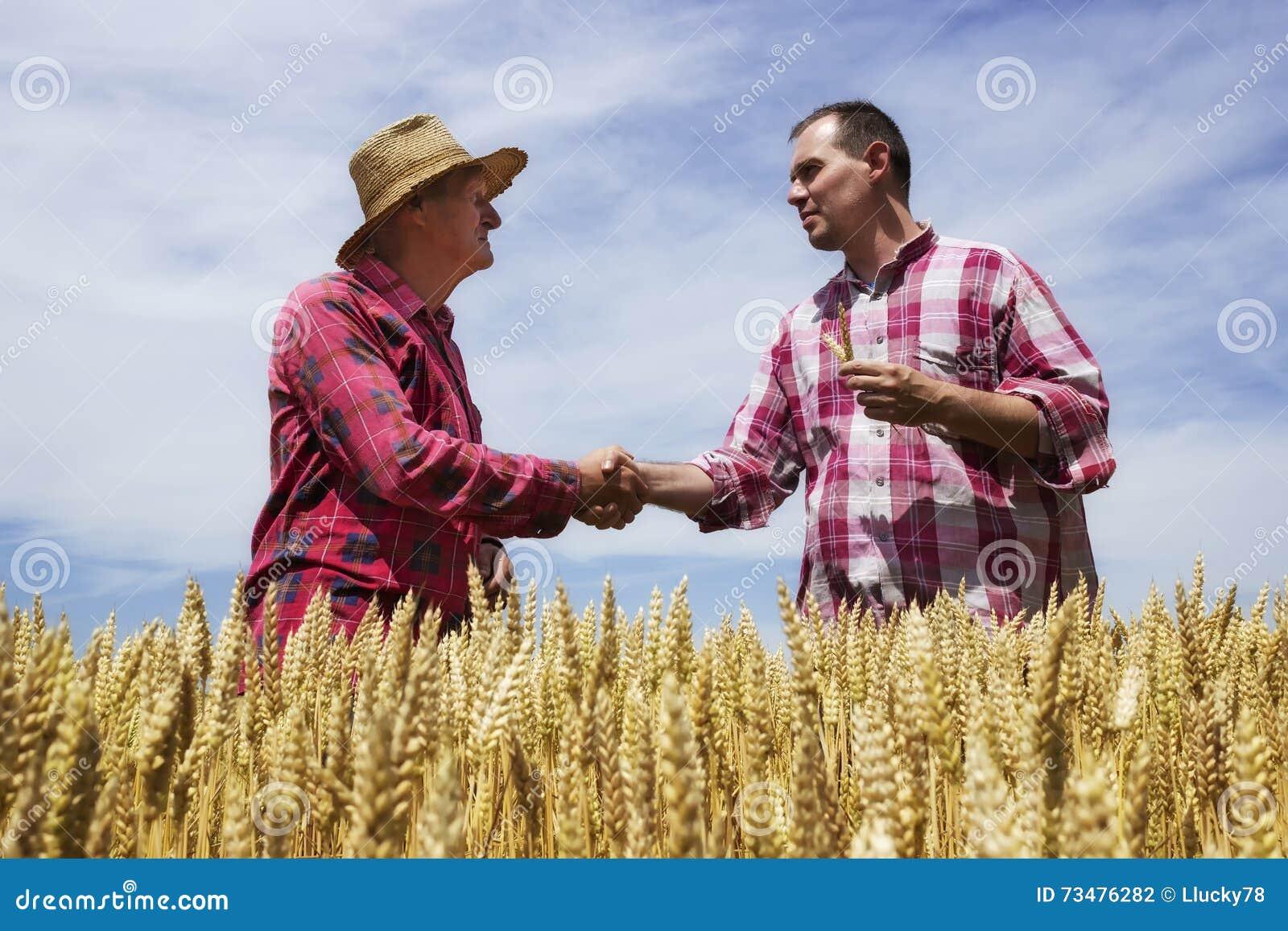 供以人员与农夫和congrats农夫的震动好麦子的