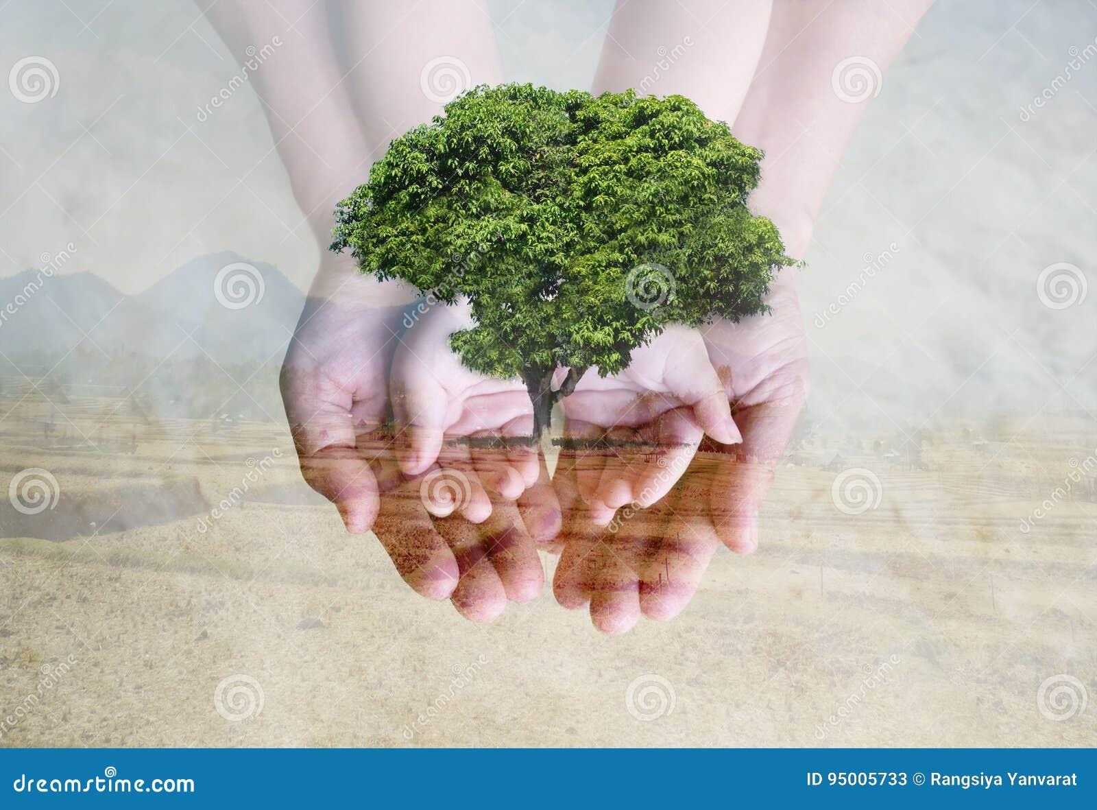 保存绿色环境