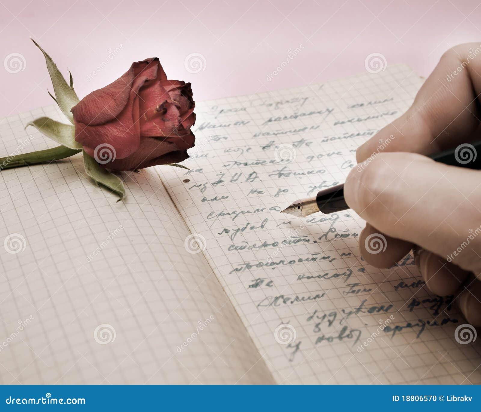 信函爱玫瑰写道