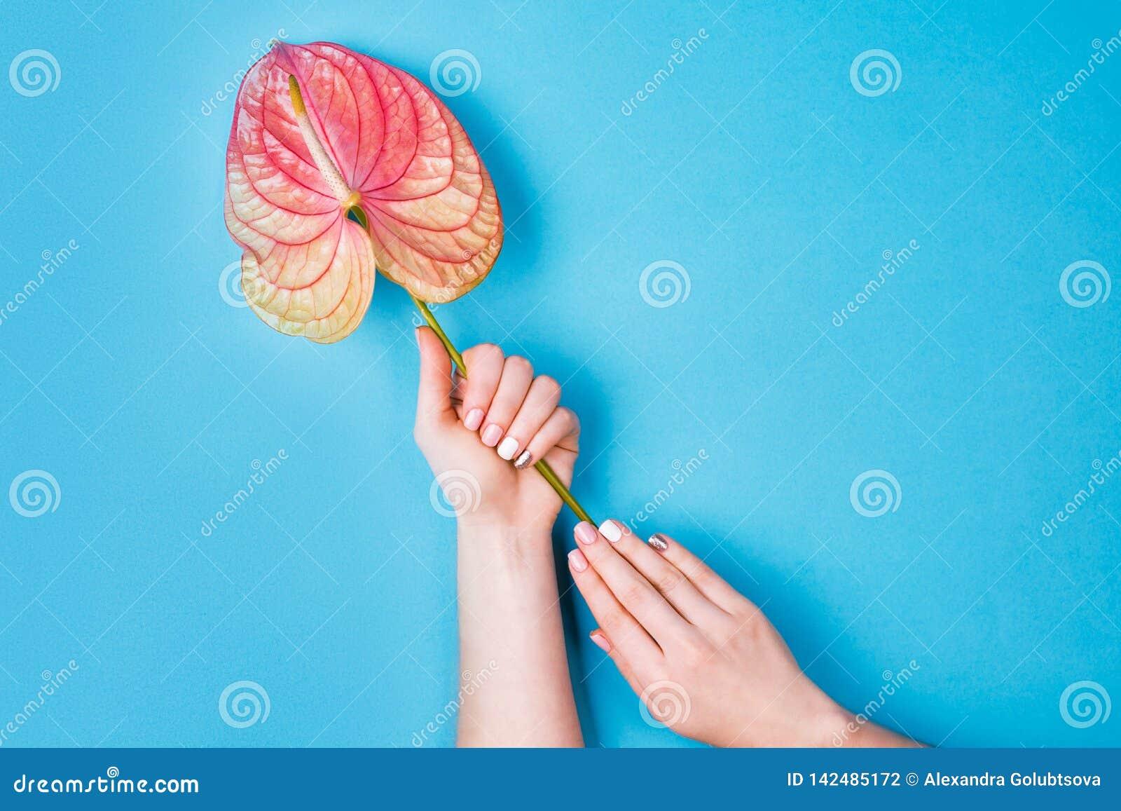 修指甲和花构成