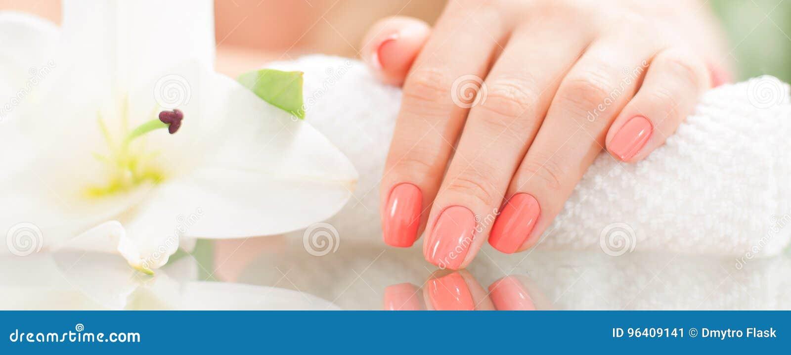 修指甲概念 美好的woman& x27; 有完善的修指甲的s手在美容院