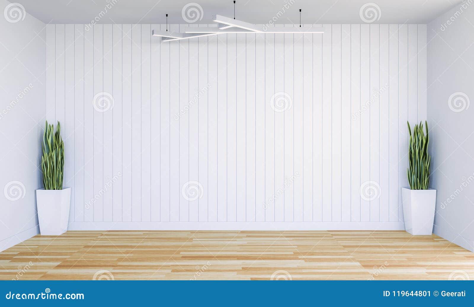 倒空有白色墙板和装饰植物的现代室