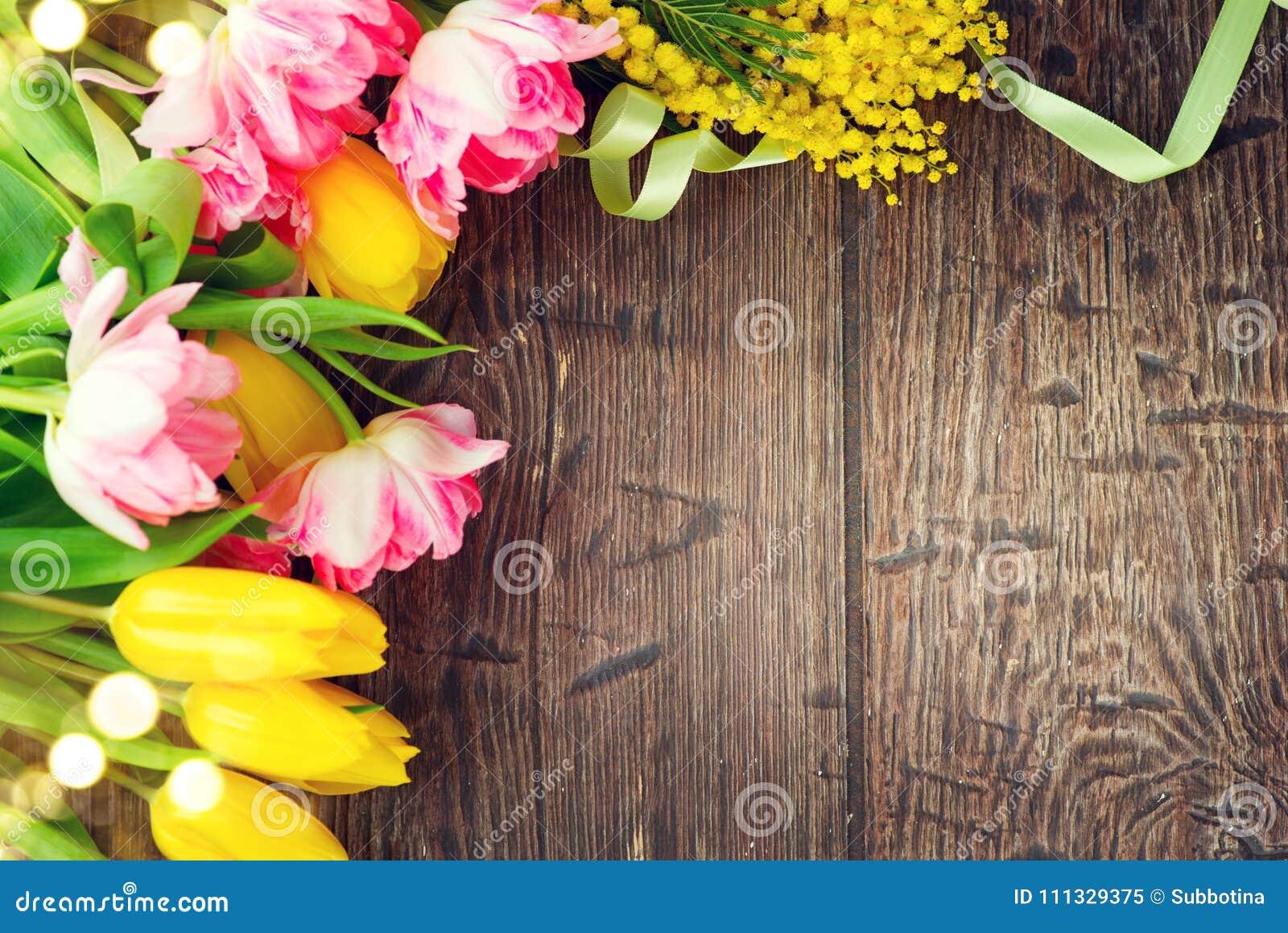 假日春天背景 照顾用五颜六色的郁金香花和含羞草花装饰的` s天假日木背景框架