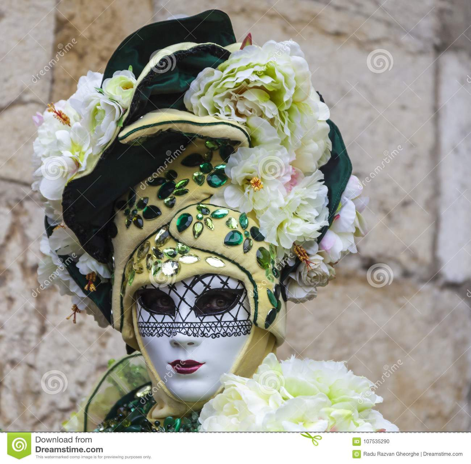 假装的人-阿讷西威尼斯式狂欢节2013年