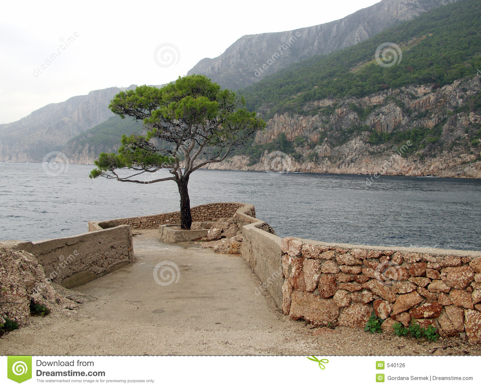 Download 偏僻的最近的海运结构树 库存照片. 图片 包括有 风暴, 海岛, 本质, 石头, 孑然, 蓝色, 多云, 小珠靠岸的 - 540126