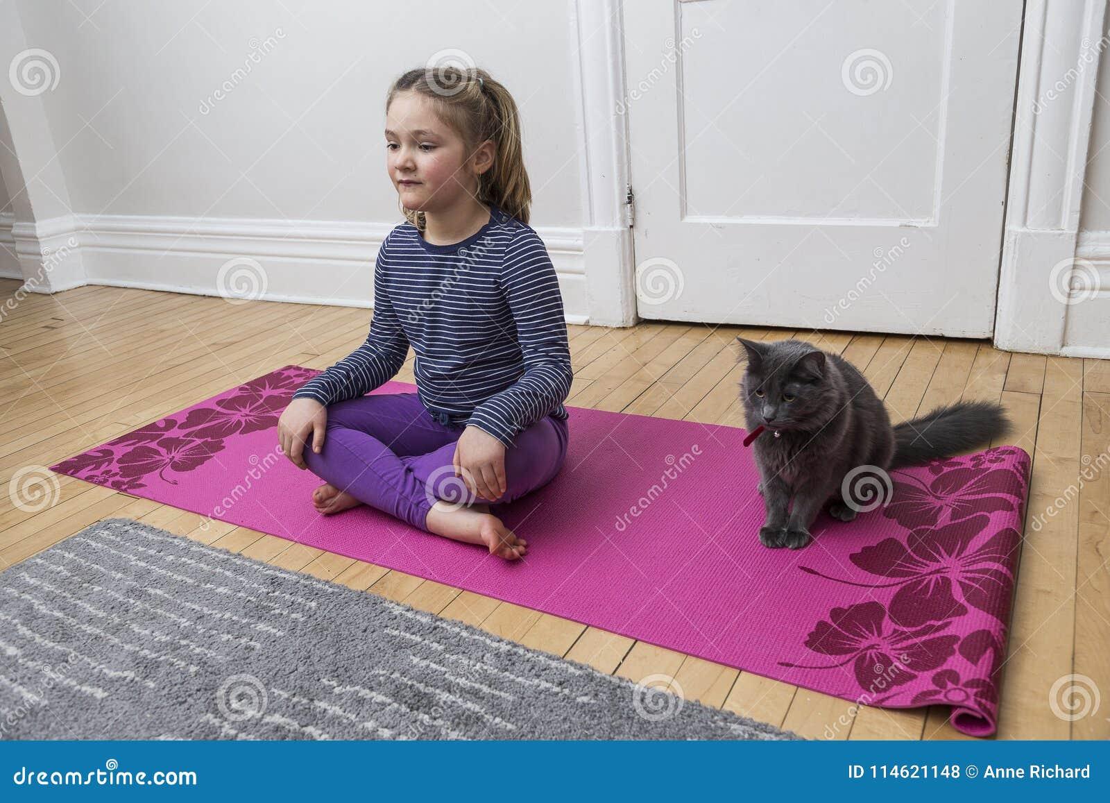 做与灰色猫的小女孩瑜伽横渡有腿的开会姿势
