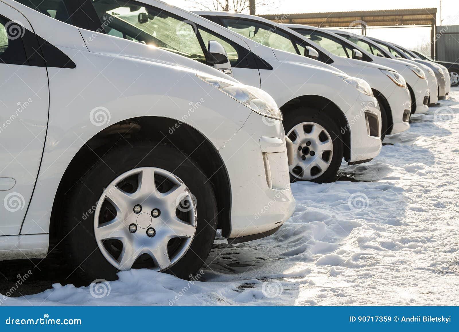 停放的汽车很多 新的汽车行在车商停车处的