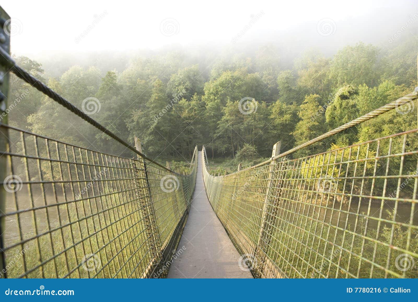 停止在河的桥梁英尺