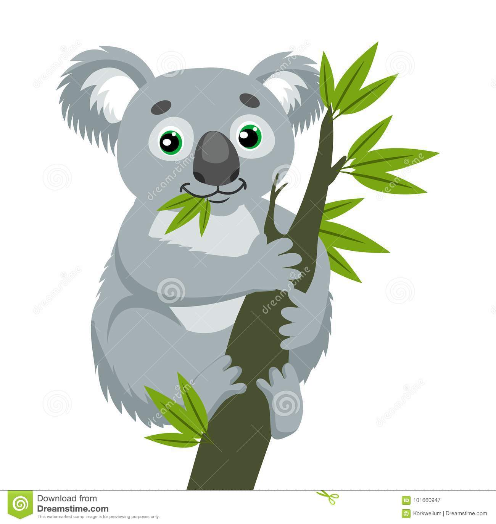 偶象有袋动物 考拉涉及与绿色叶子的木分支 澳大利亚动物