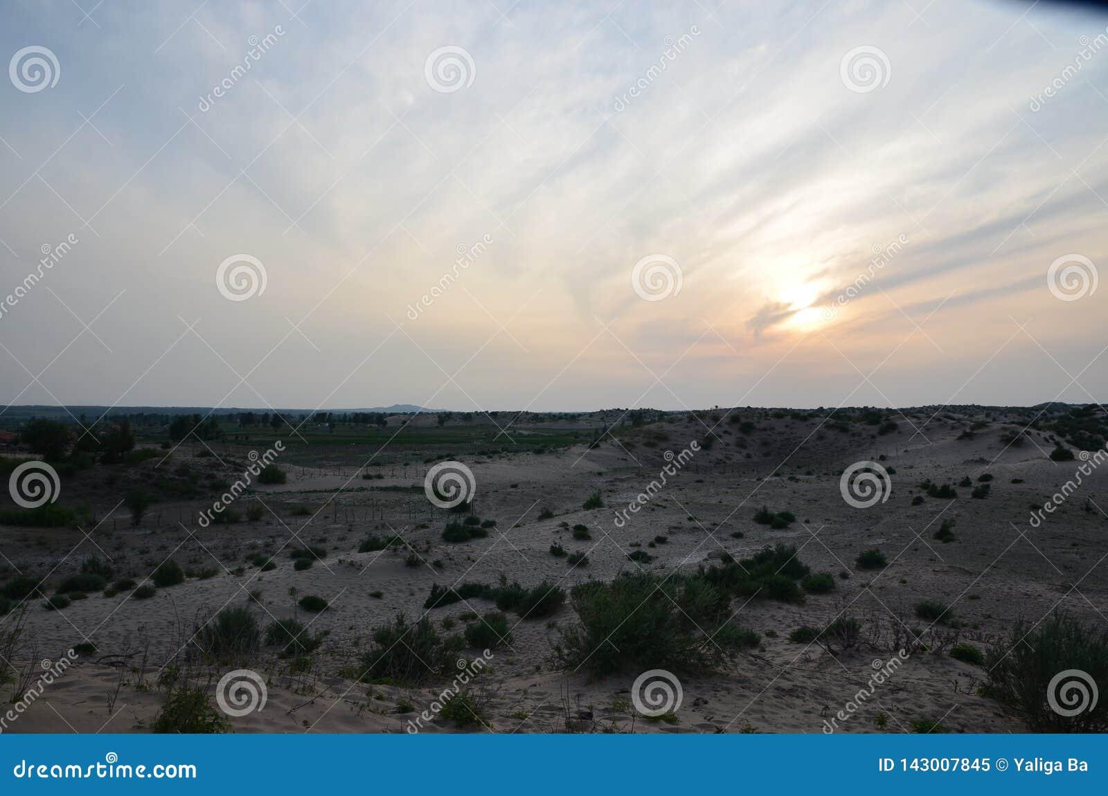 充满活力的沙漠