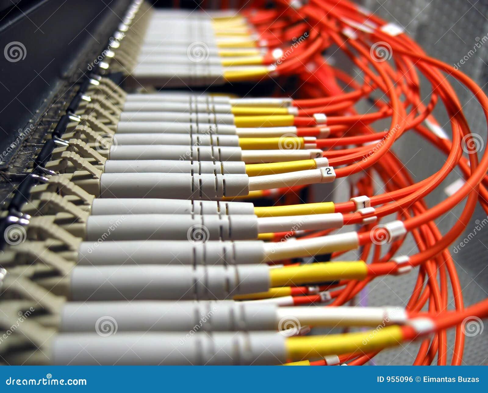 光学纤维的网络