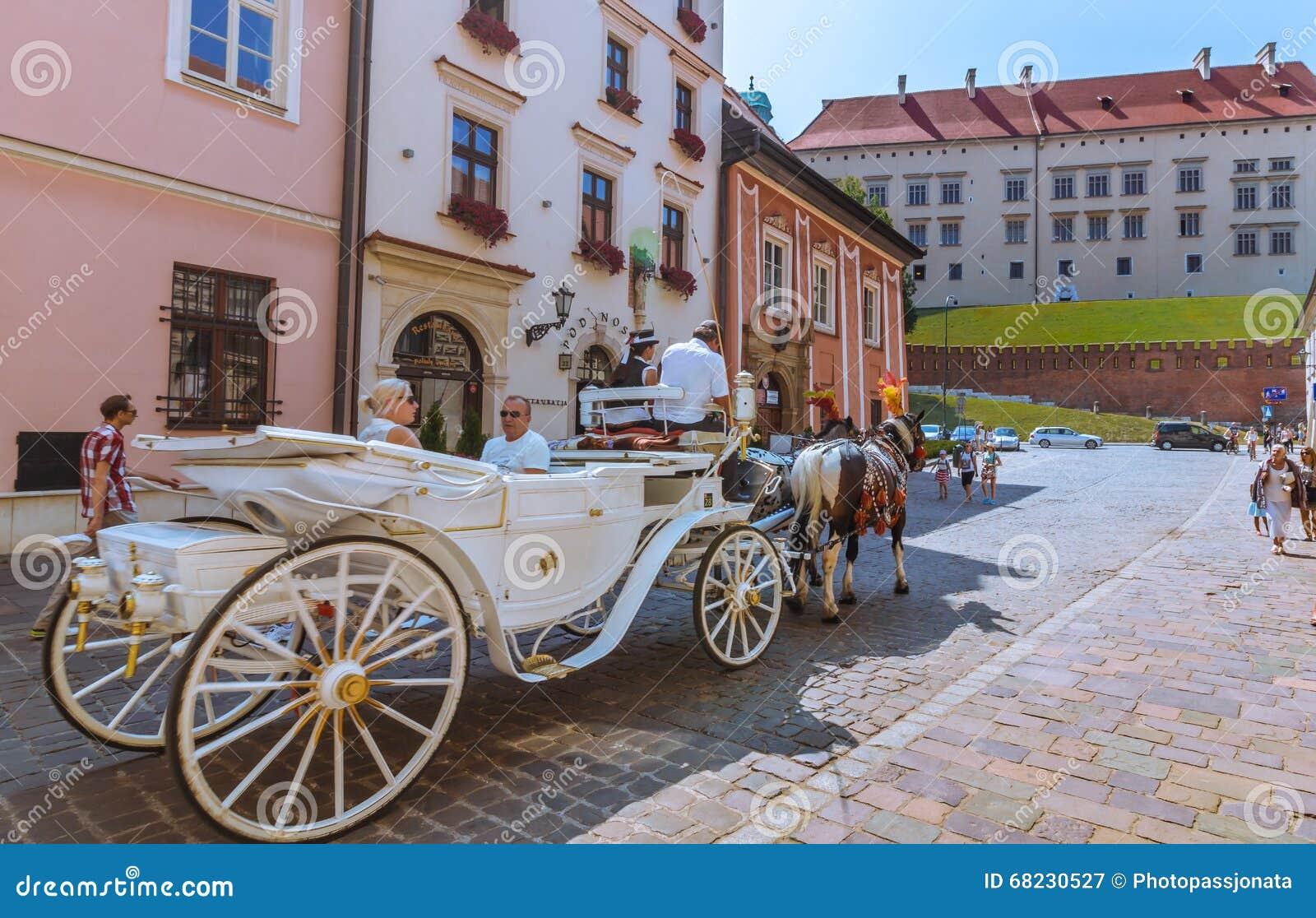 克拉科夫(克拉科夫) -波兰马对Wawel城堡的支架游览