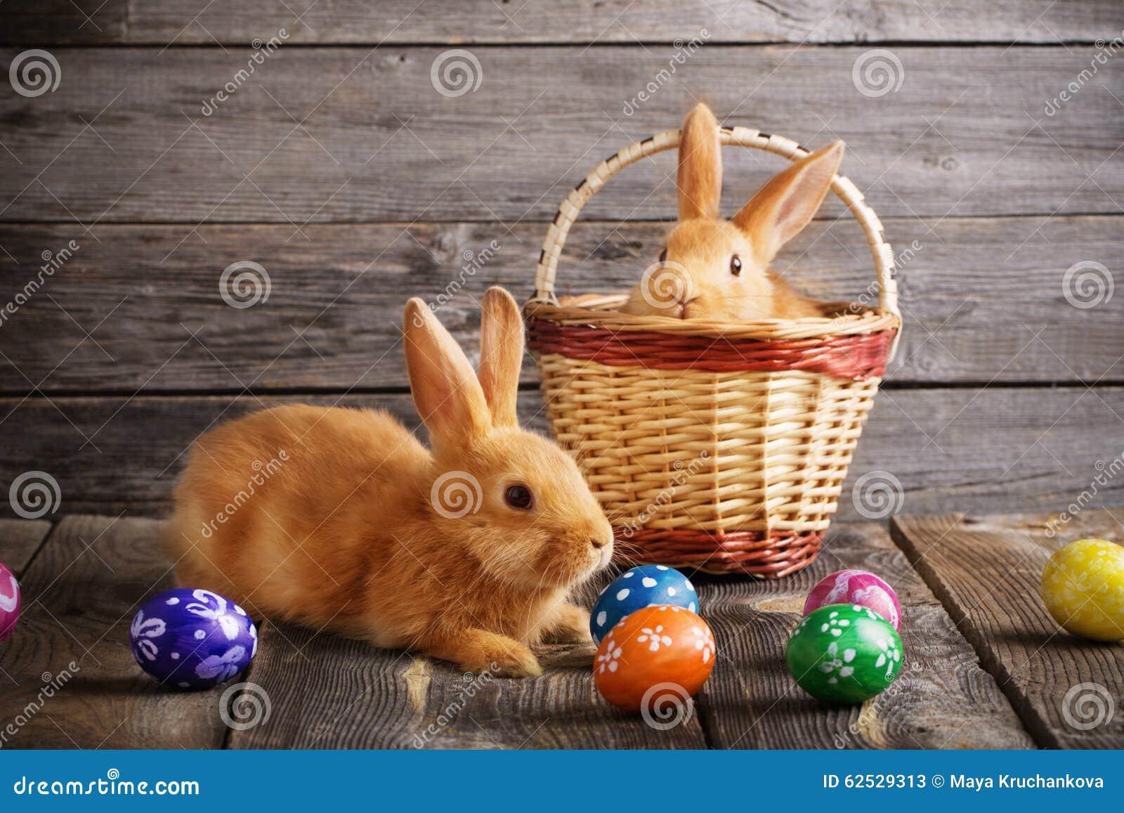 兔子用在木背景的复活节彩蛋