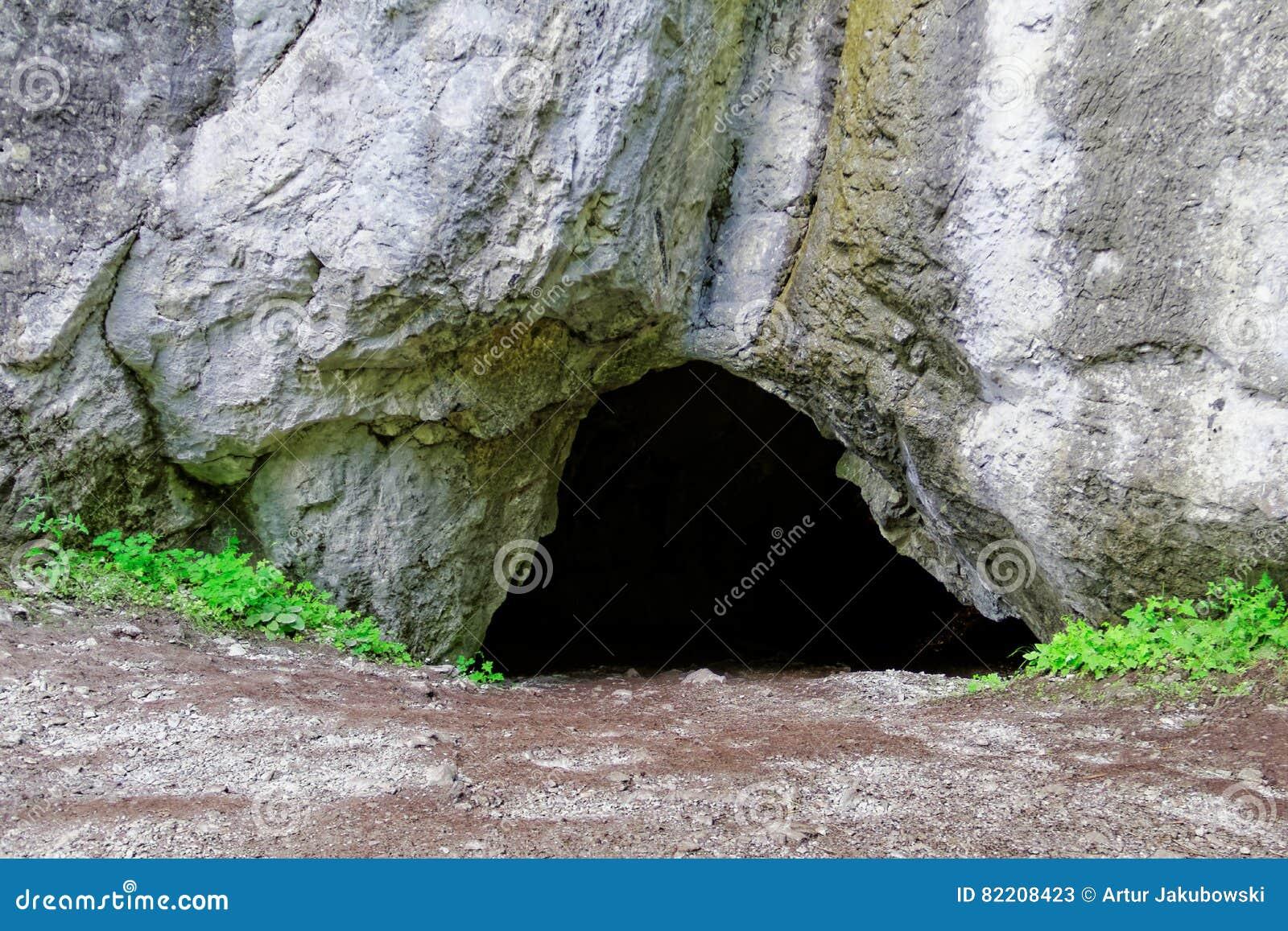 洞入口风险轻率冒险