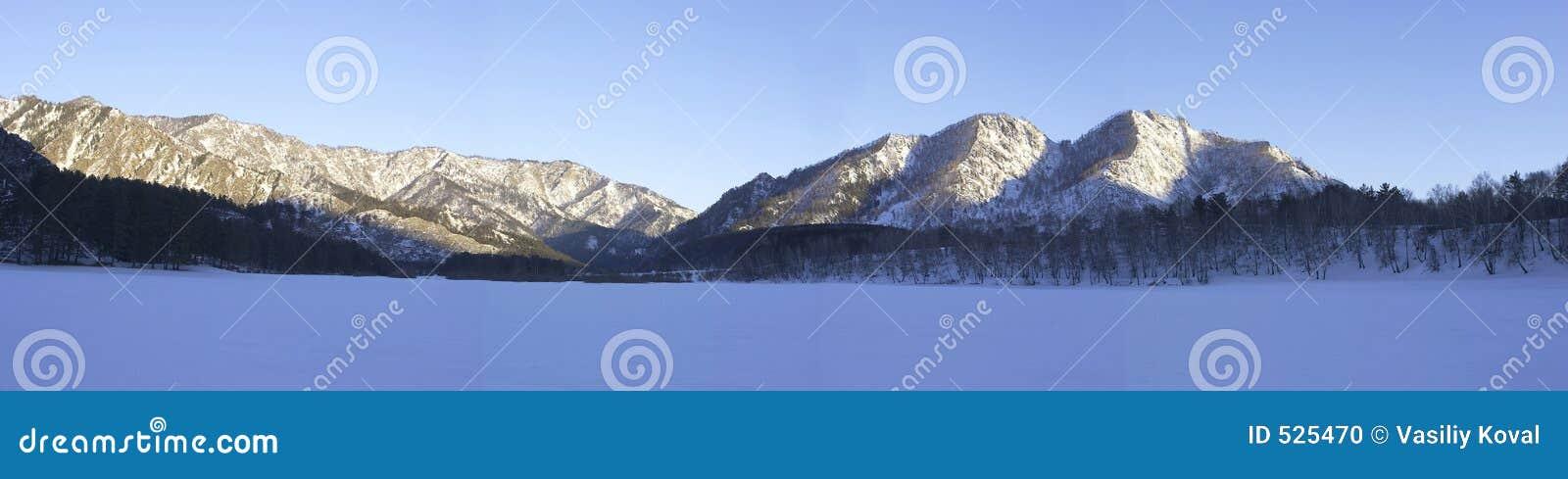 Download 全景冬天 库存照片. 图片 包括有 全景, 晒裂, 冬天, 天空, 森林, 杉木, 横向, 俄国, 结构树, 西伯利亚 - 525470