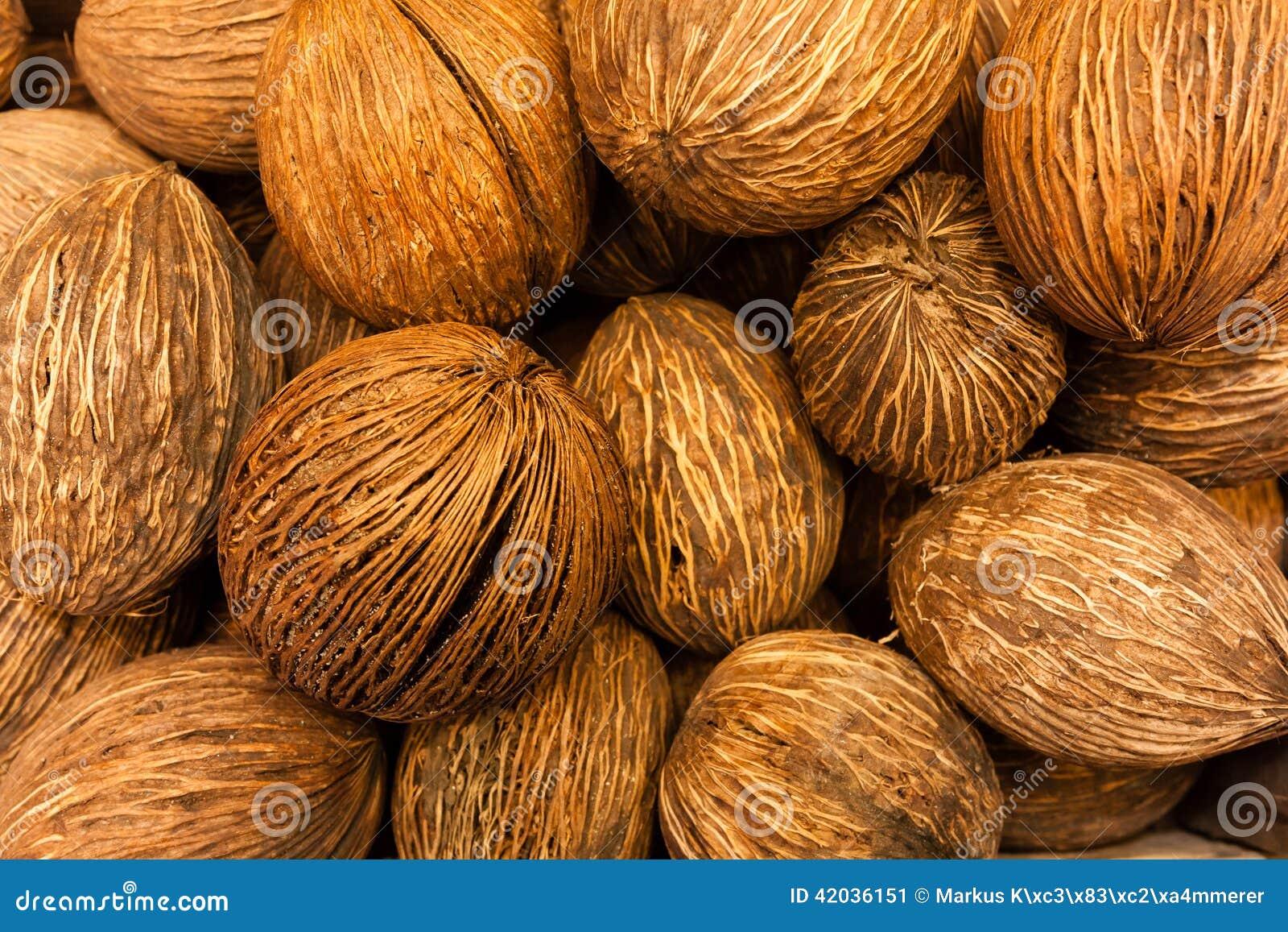 全部的椰子