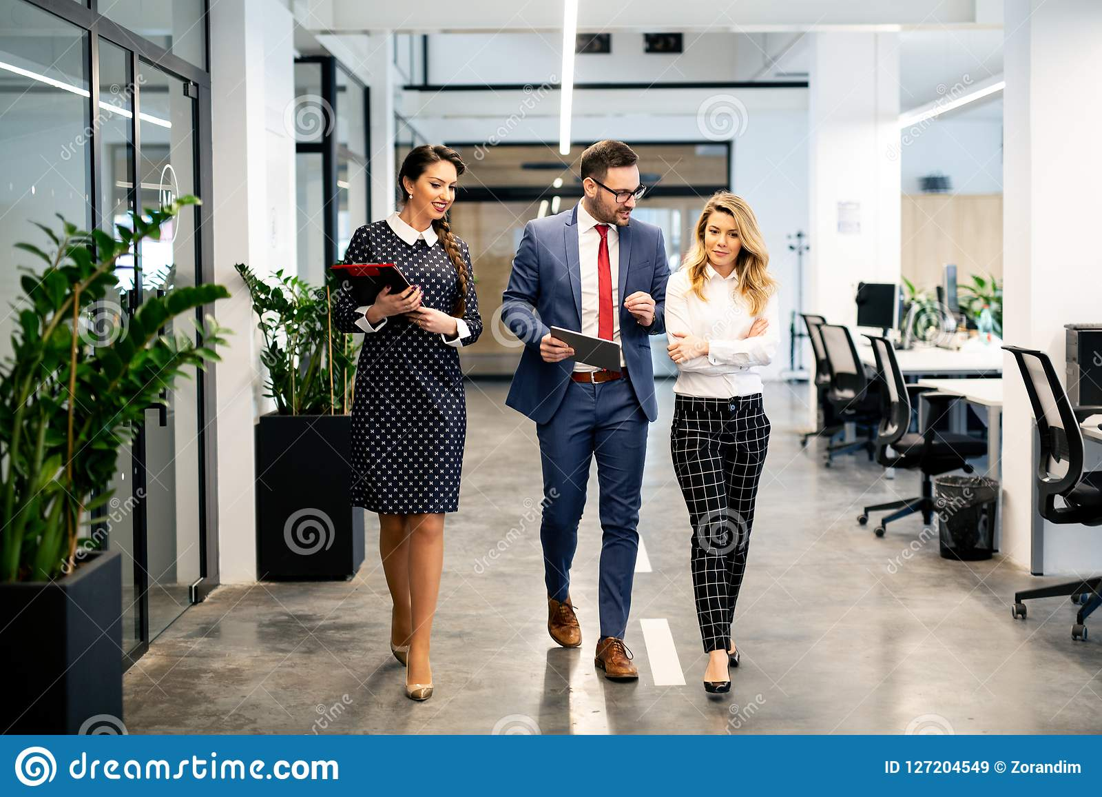 全长一起走小组愉快的年轻的商人走廊在办公室