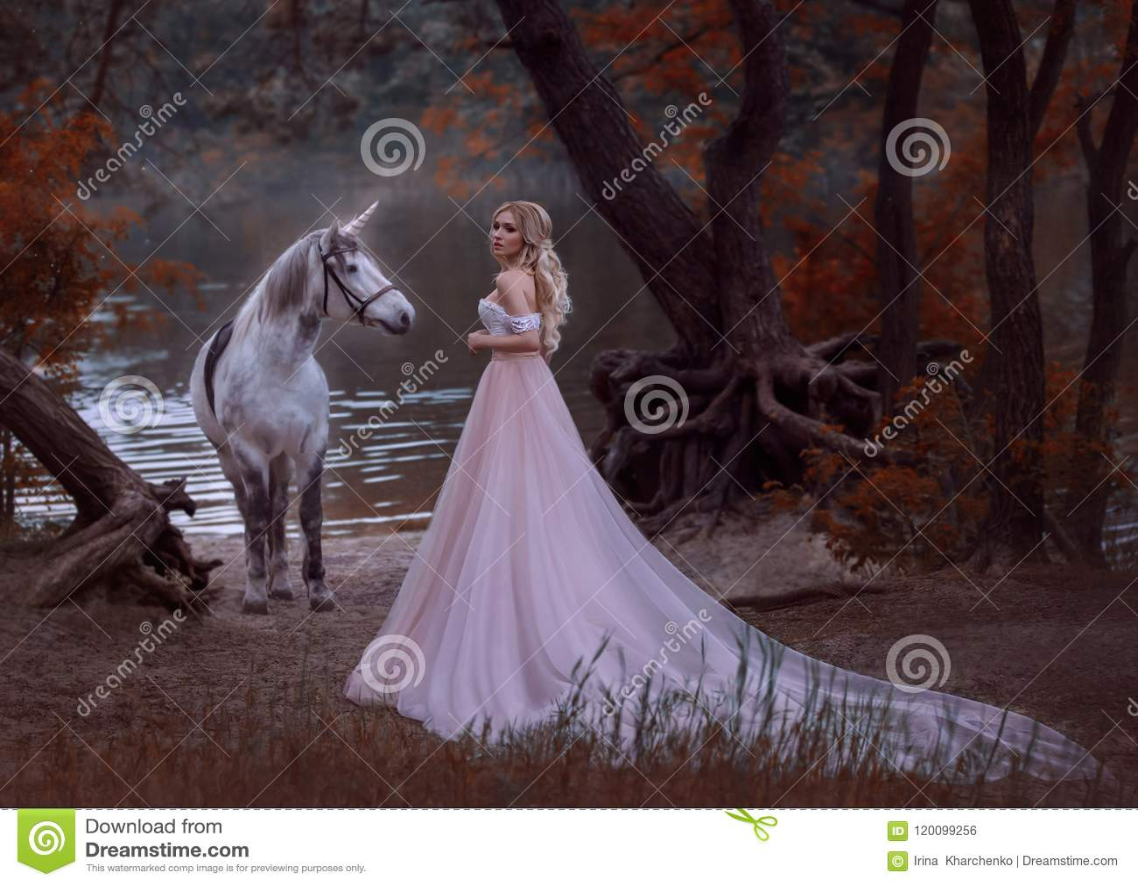 公主在森林里在一件长的葡萄酒礼服遇见了一只独角兽有柔和的构成的白肤金发的女孩,穿戴与