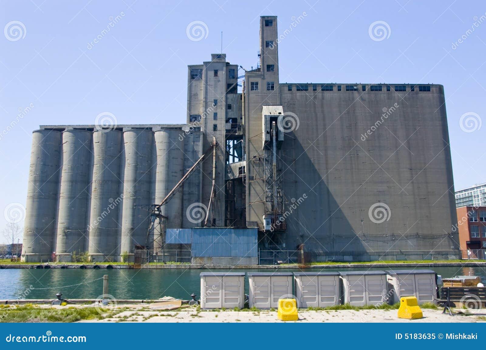 公司麦粒发芽
