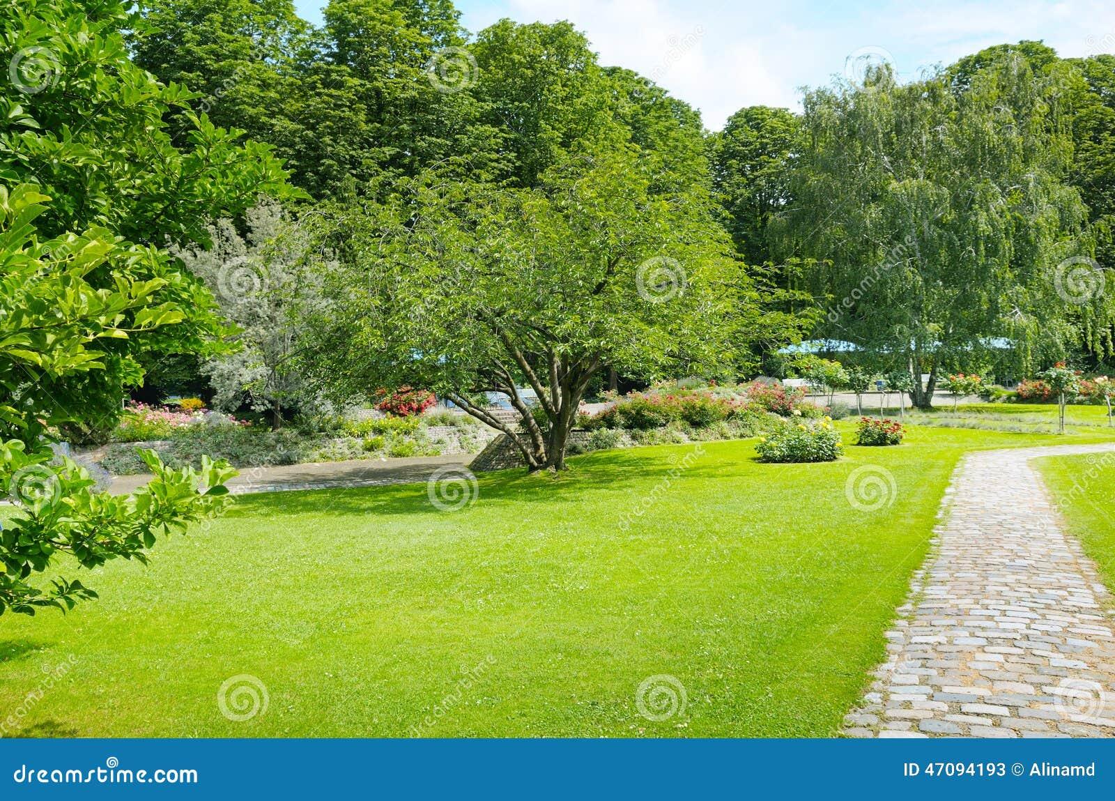 bossies, 颜色, 五颜六色, 域, 华腴, 花卉, 花, 花圃, 正式, 庭院图片