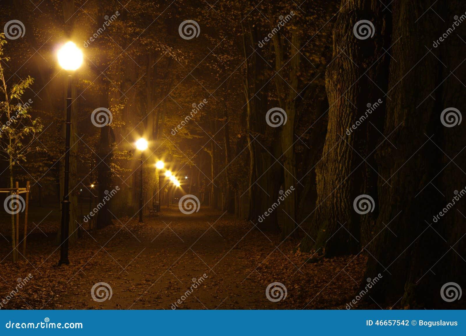 公园在晚上