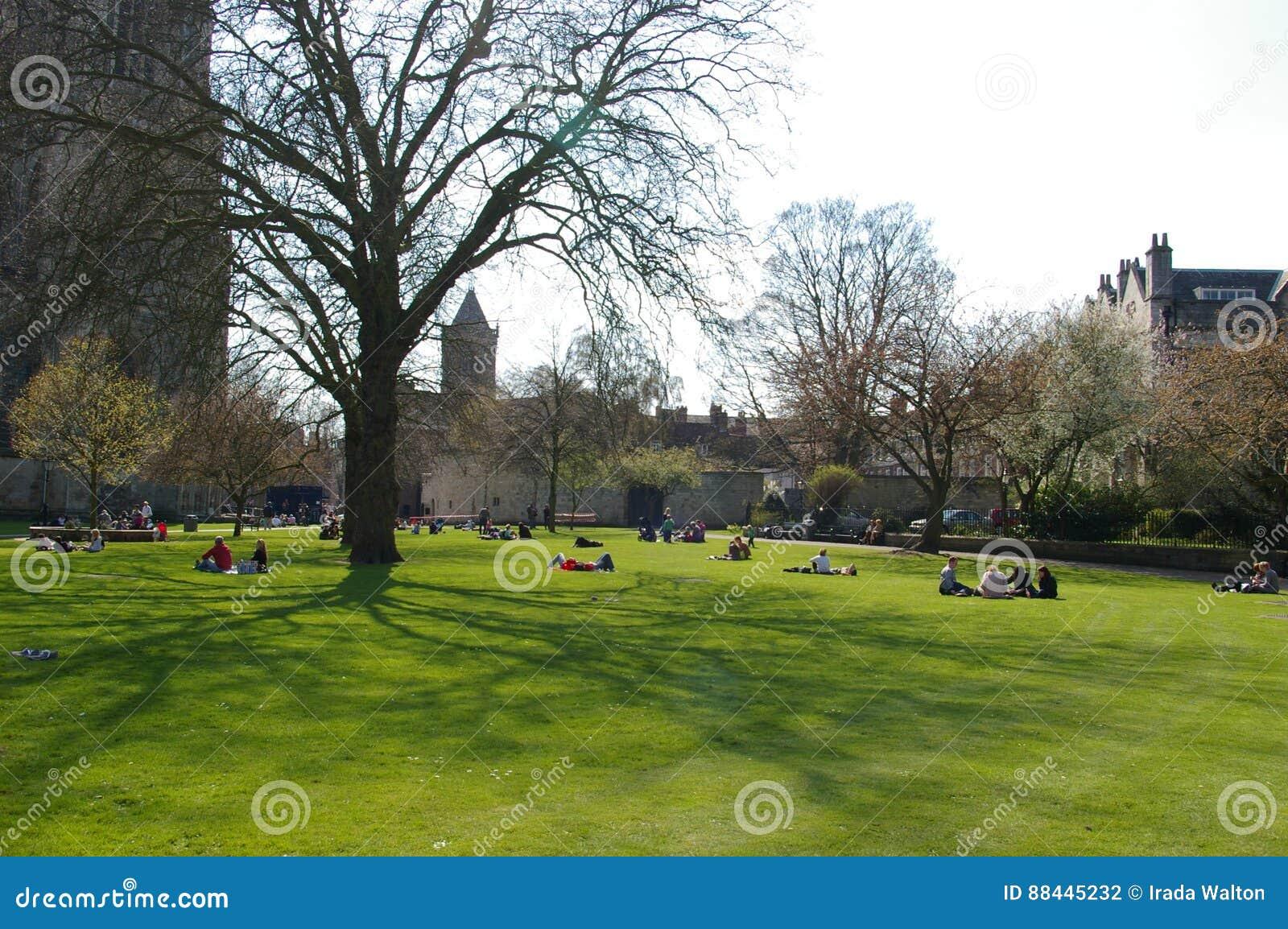 公园在英国