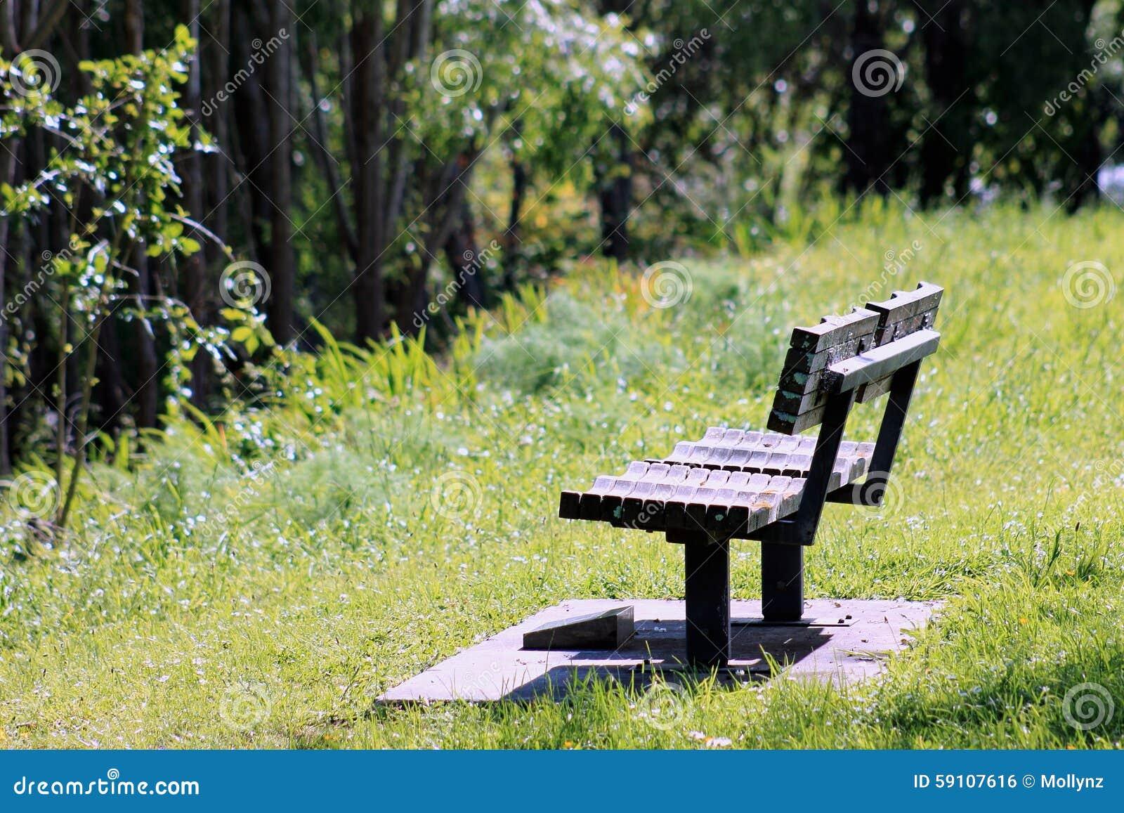 公园长椅在秋天