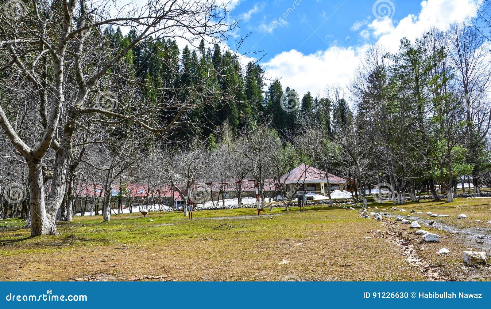 公园风景看法Naran谷的,巴基斯坦
