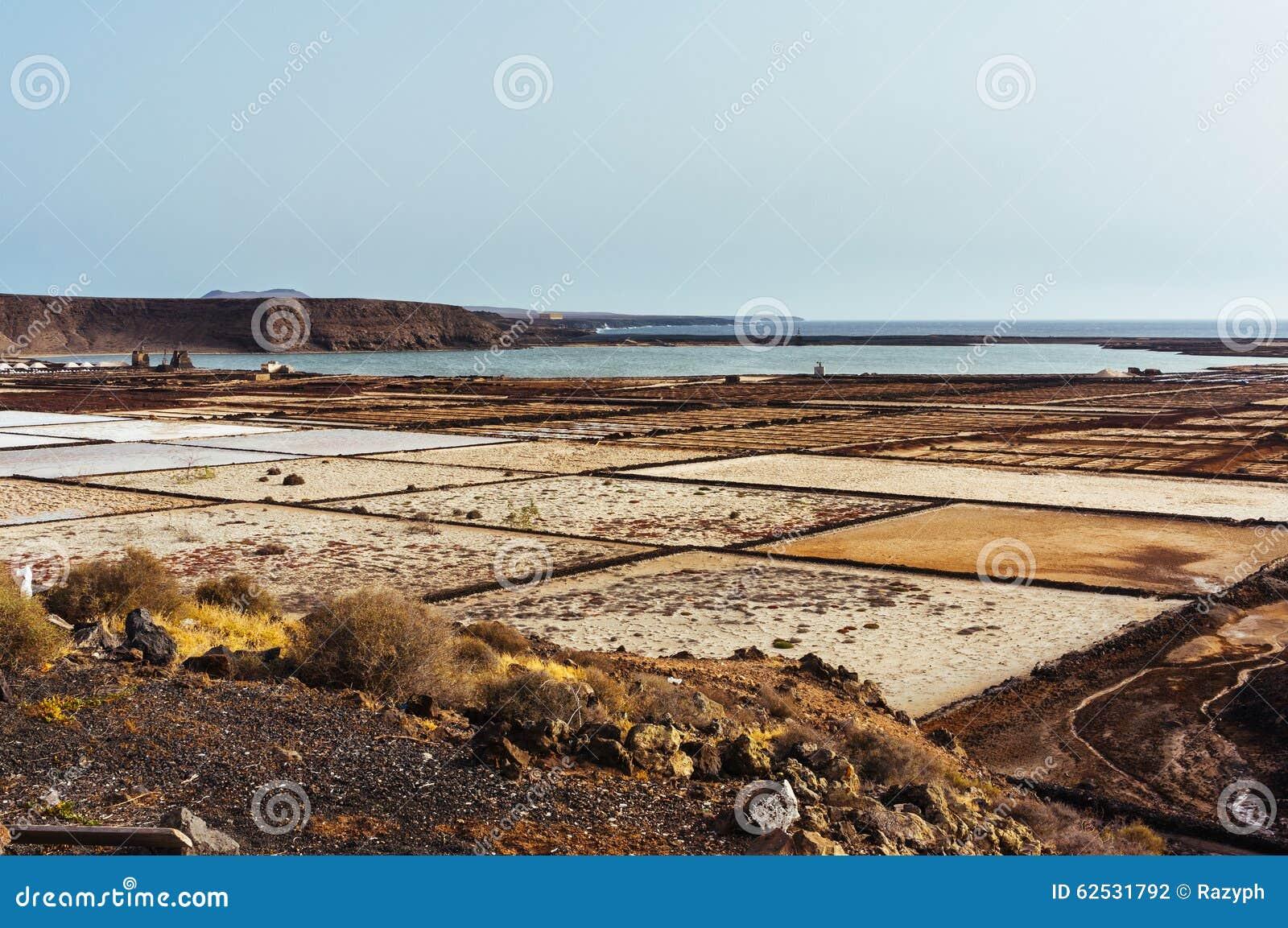 兰萨罗特岛Salines
