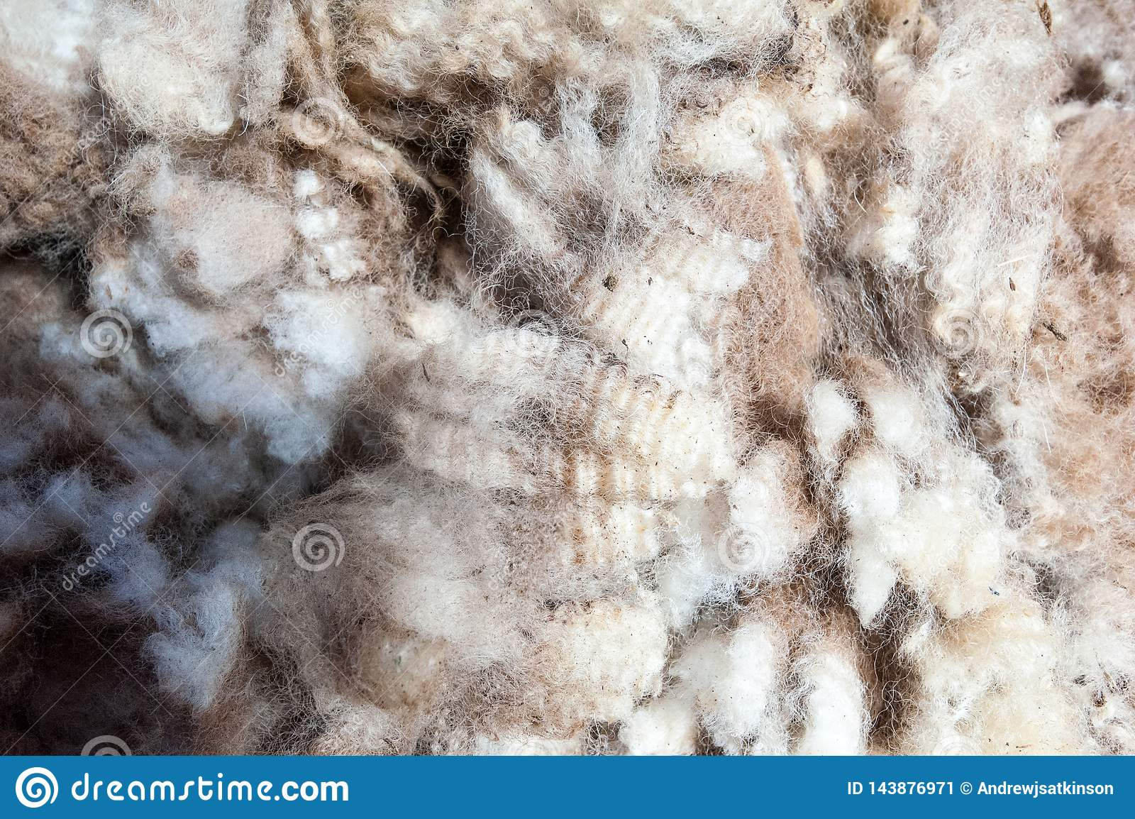 关闭一些羊毛夹子