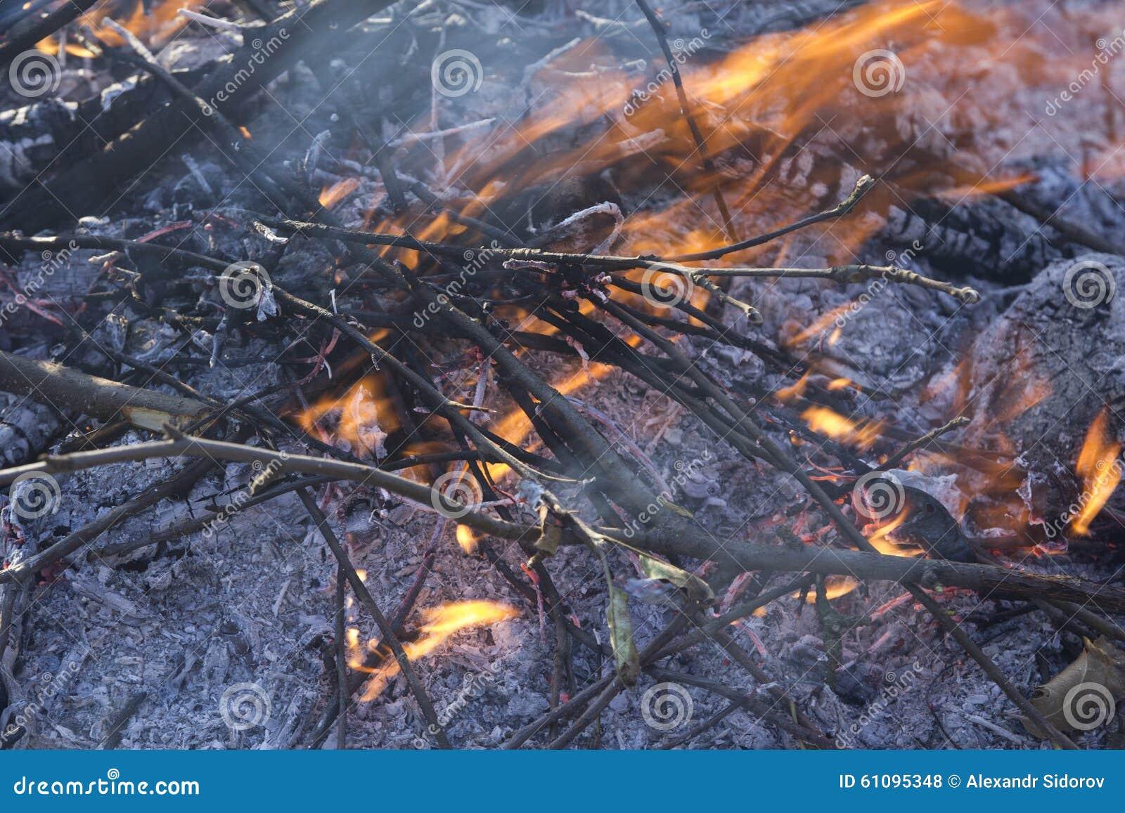 关闭与火焰和炭烬的死的火