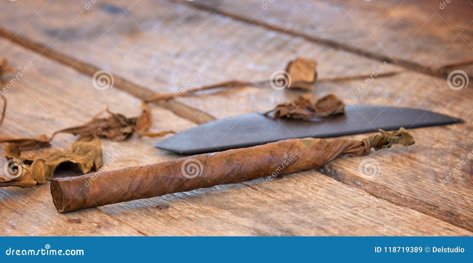 关闭古巴手工制造雪茄用干烟草离开