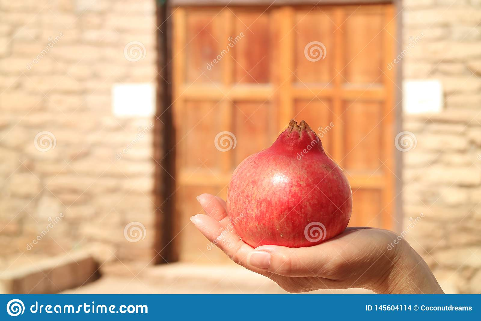 关闭在妇女手上的一个新鲜的成熟智利石榴