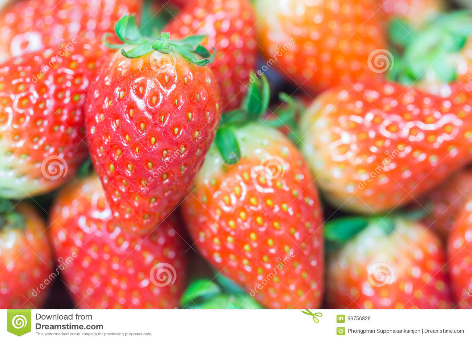 关闭小组新鲜的红色草莓