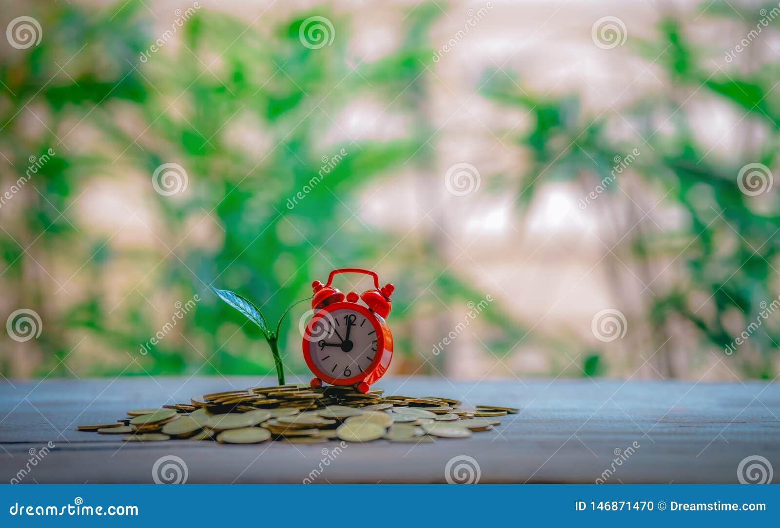 关闭时间和与金钱生长