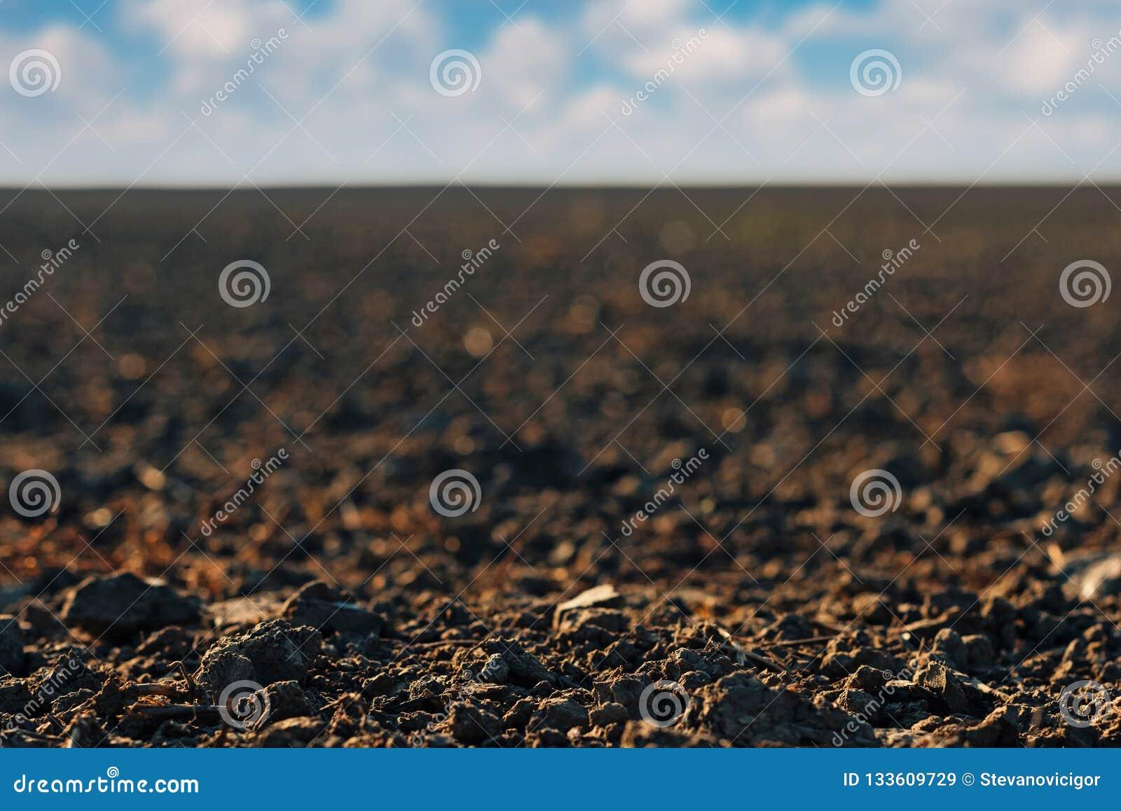 关闭最近被耕的耕地土壤