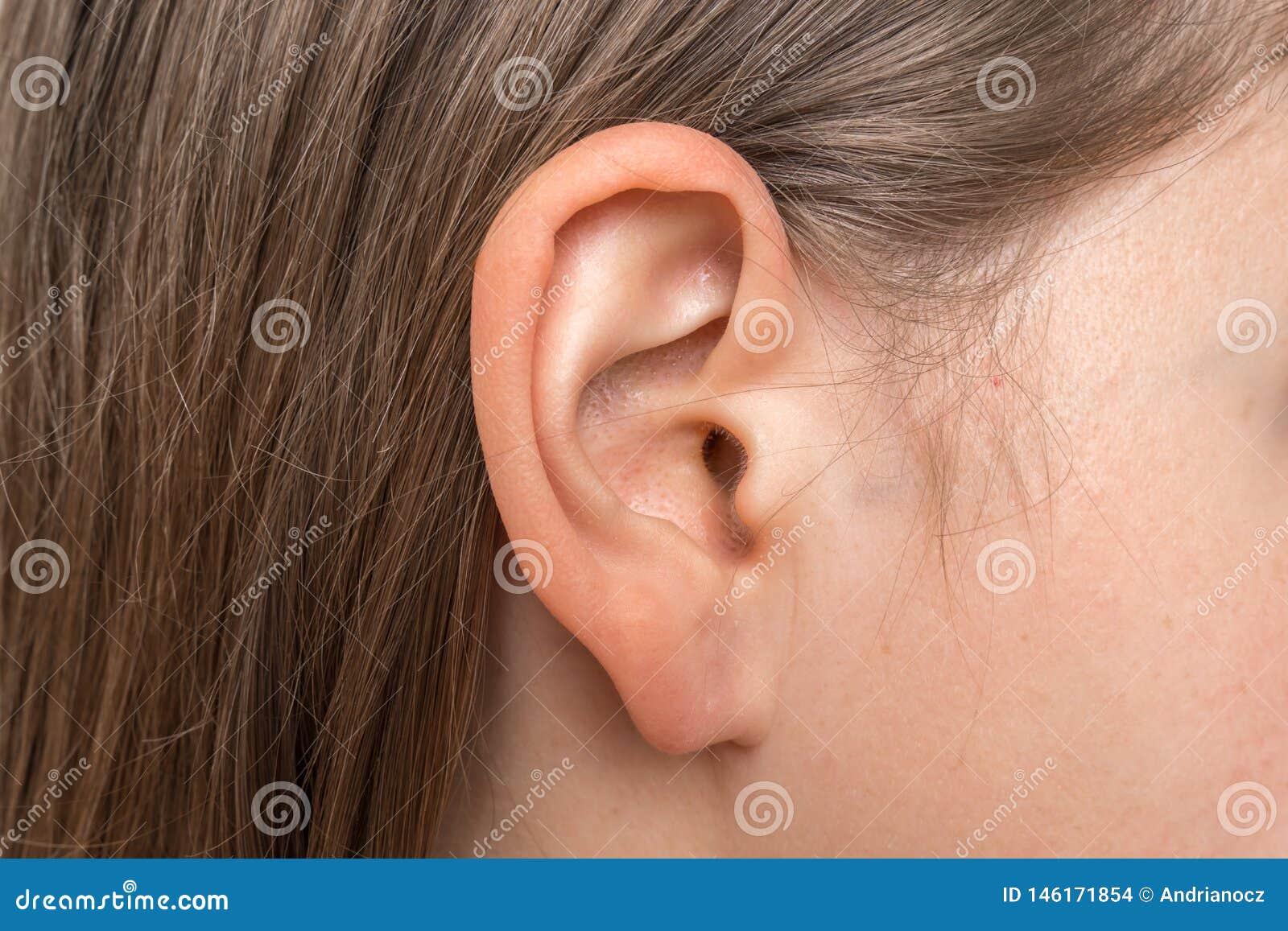 关闭有女性耳朵的人头