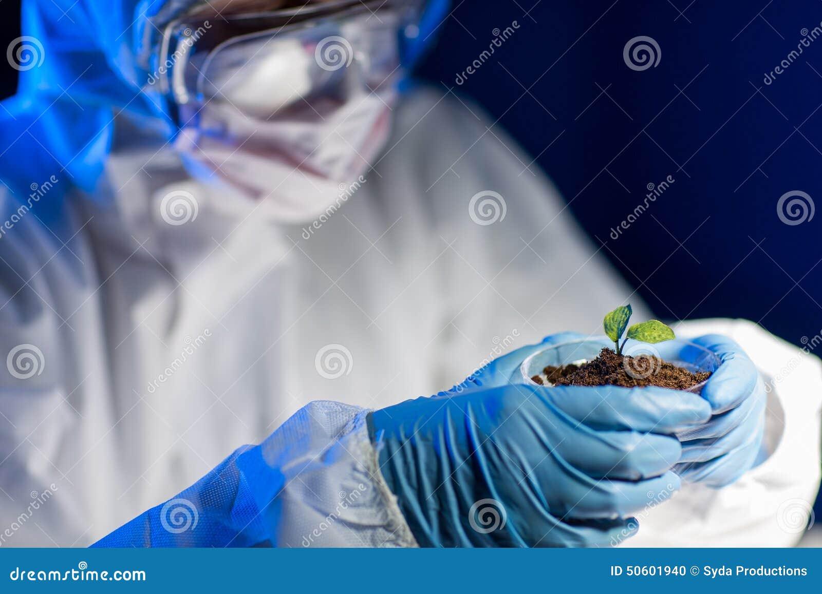 关闭有植物的科学家和土壤在实验室
