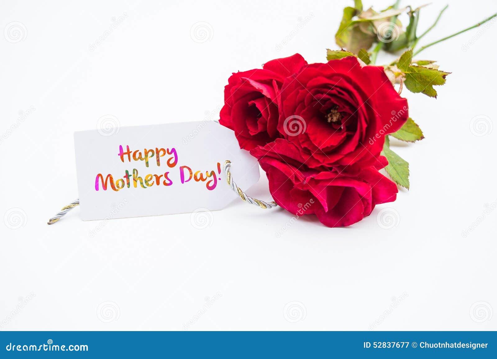 关闭桃红色玫瑰花束与一个愉快的母亲节