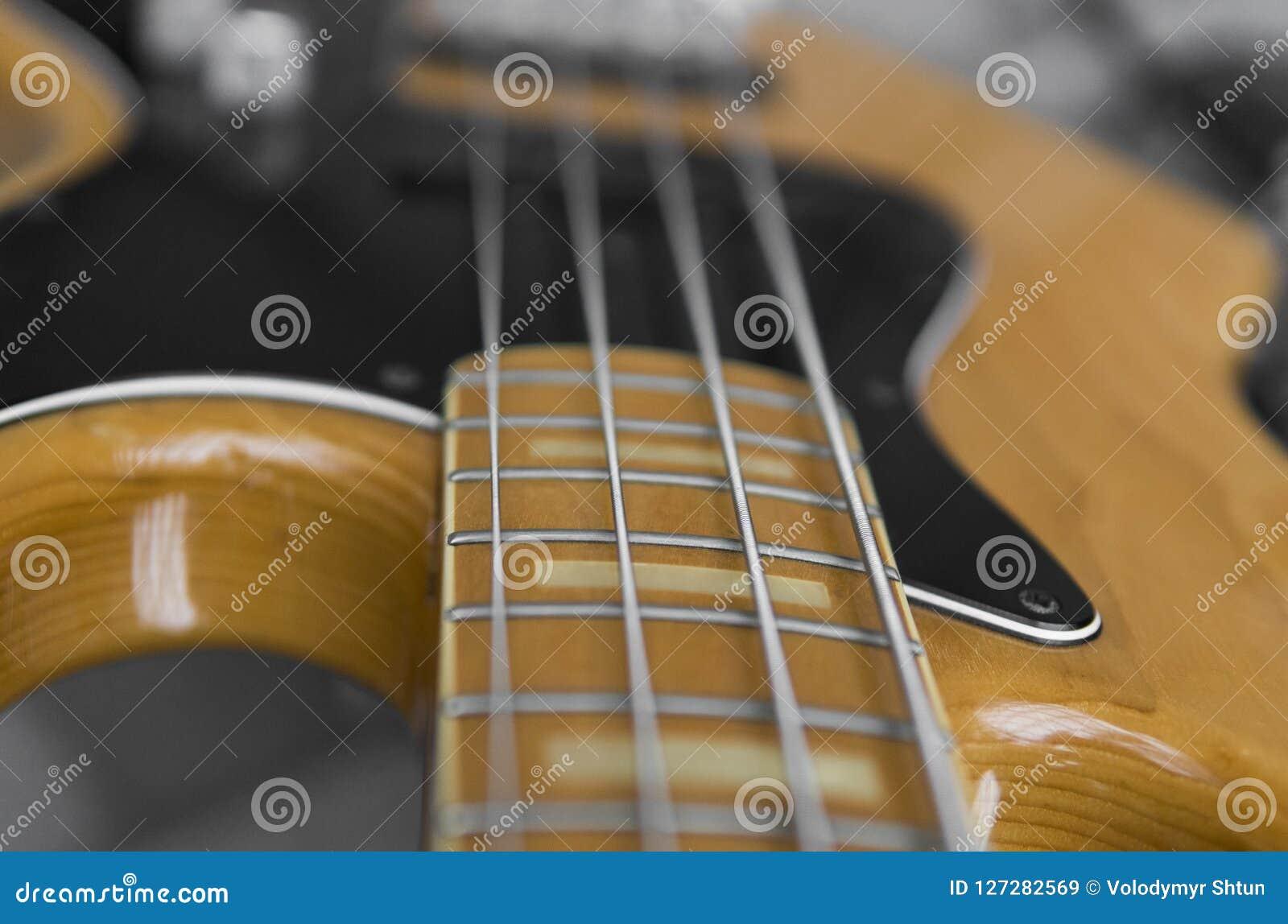 关闭电子低音吉他指板 与音量控制器的木低音