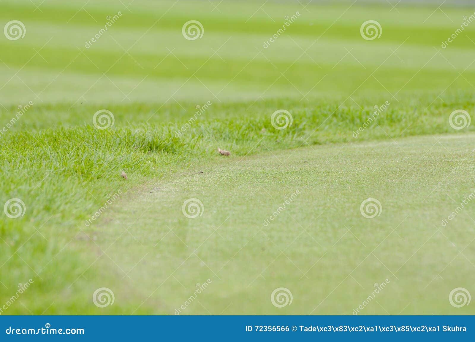 关闭高尔夫球绿色