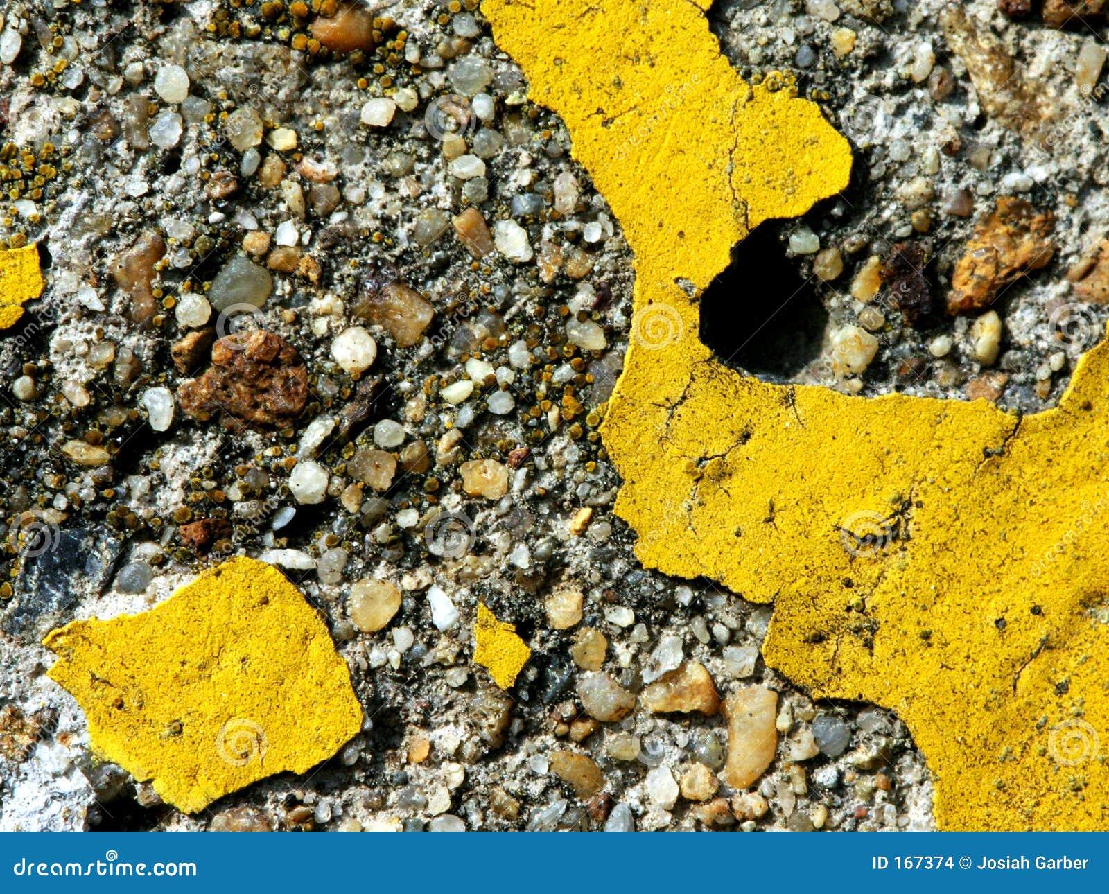 具体油漆黄色