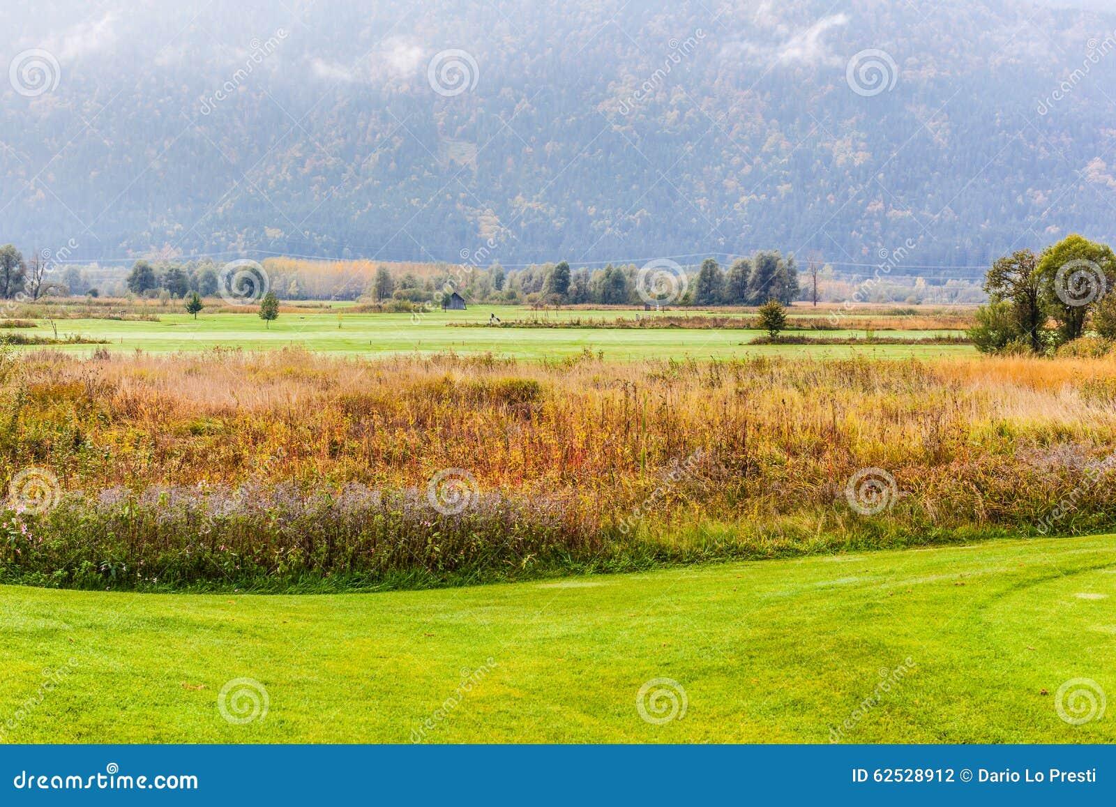 经典高尔夫球场
