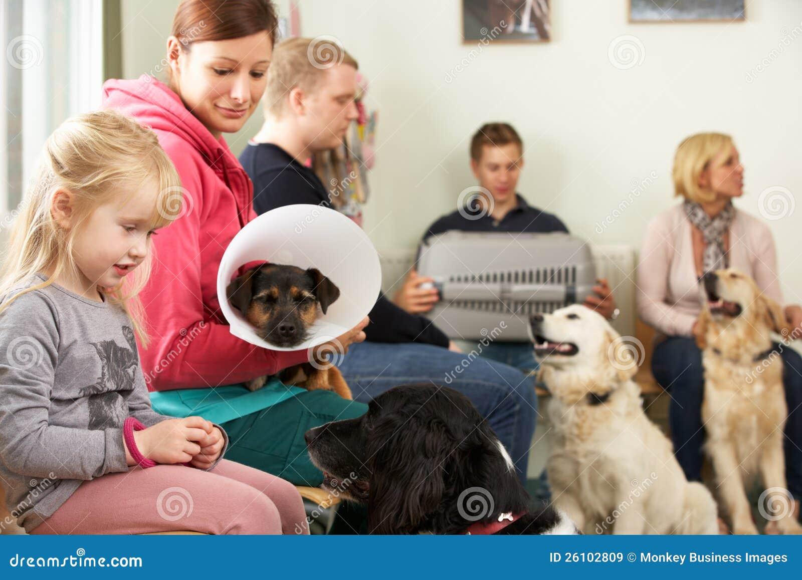 兽医手术的繁忙的候诊室