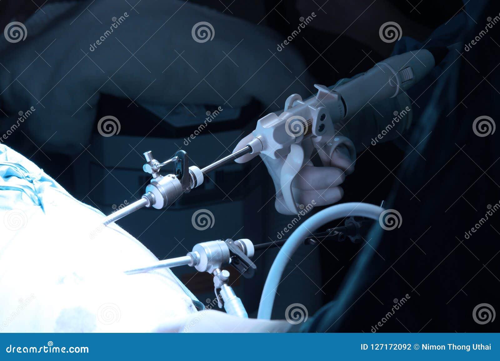 兽医腹腔镜外科的医生运转中室