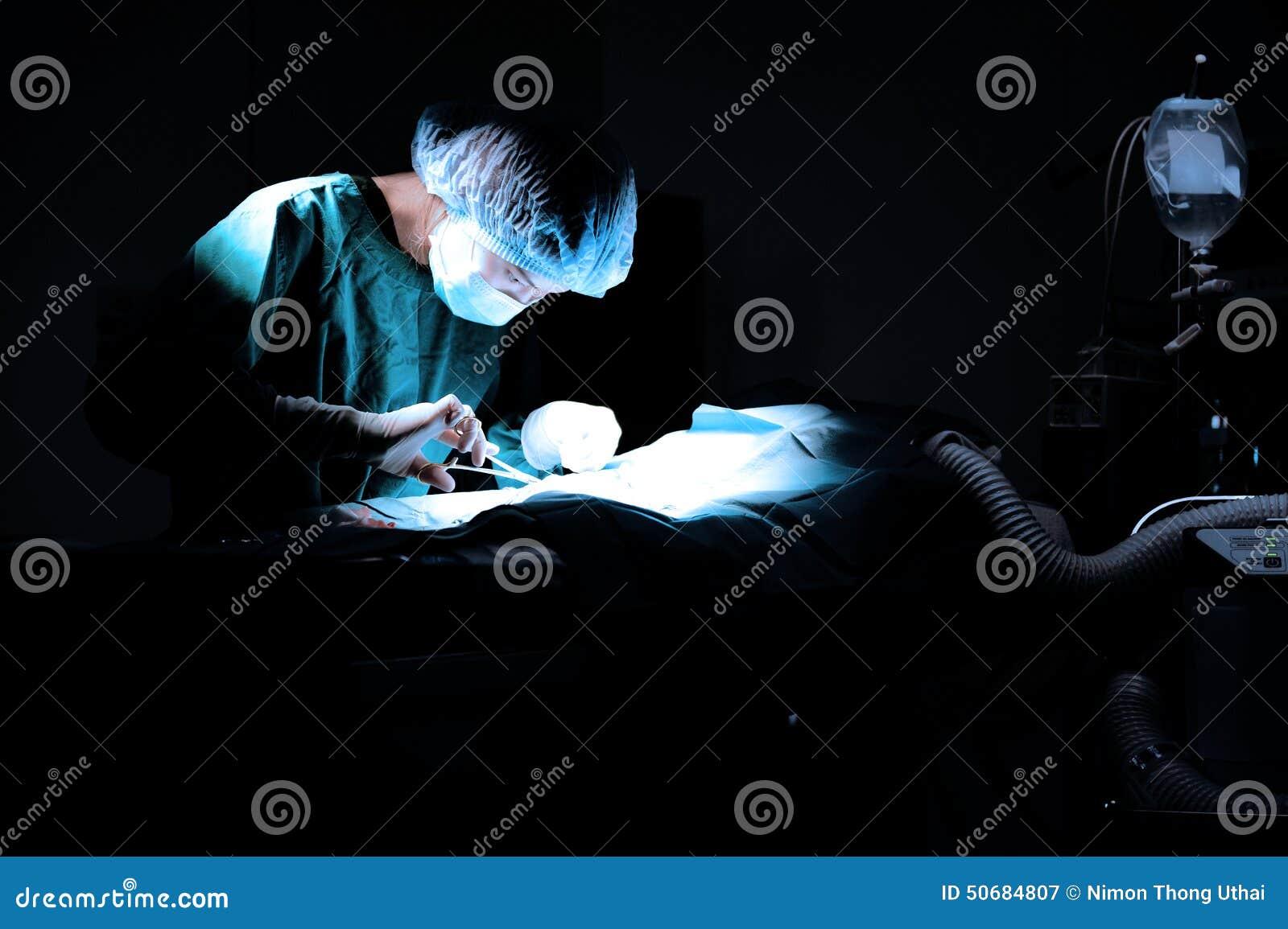 Download 兽医外科的医生运转中室 库存图片. 图片 包括有 医院, 现有量, 工友, 屏蔽, 女性, 运算, 设备 - 50684807