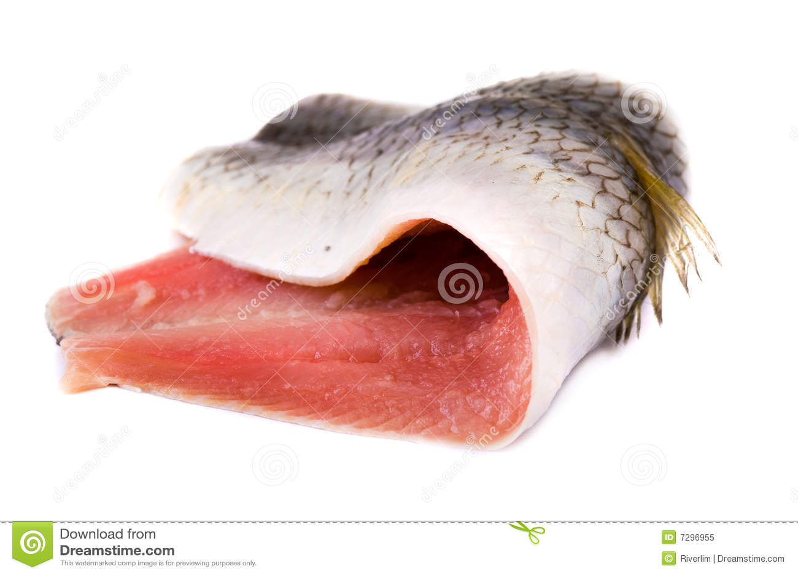 内圆角鲱鱼