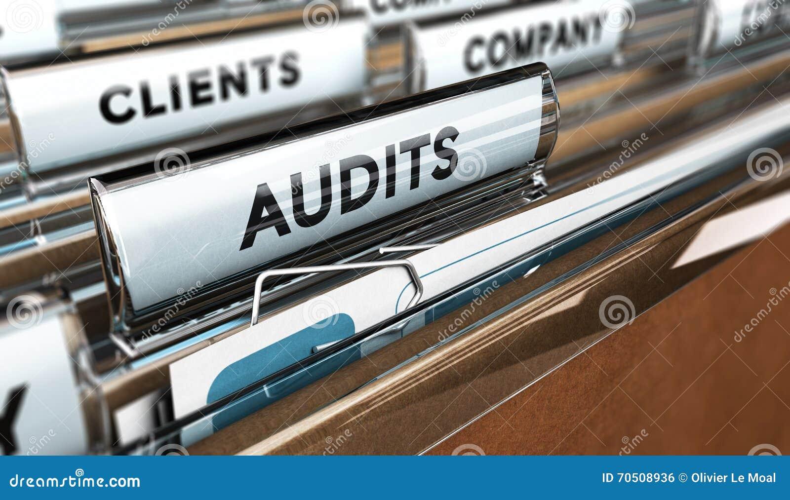 内部审计,公司管理