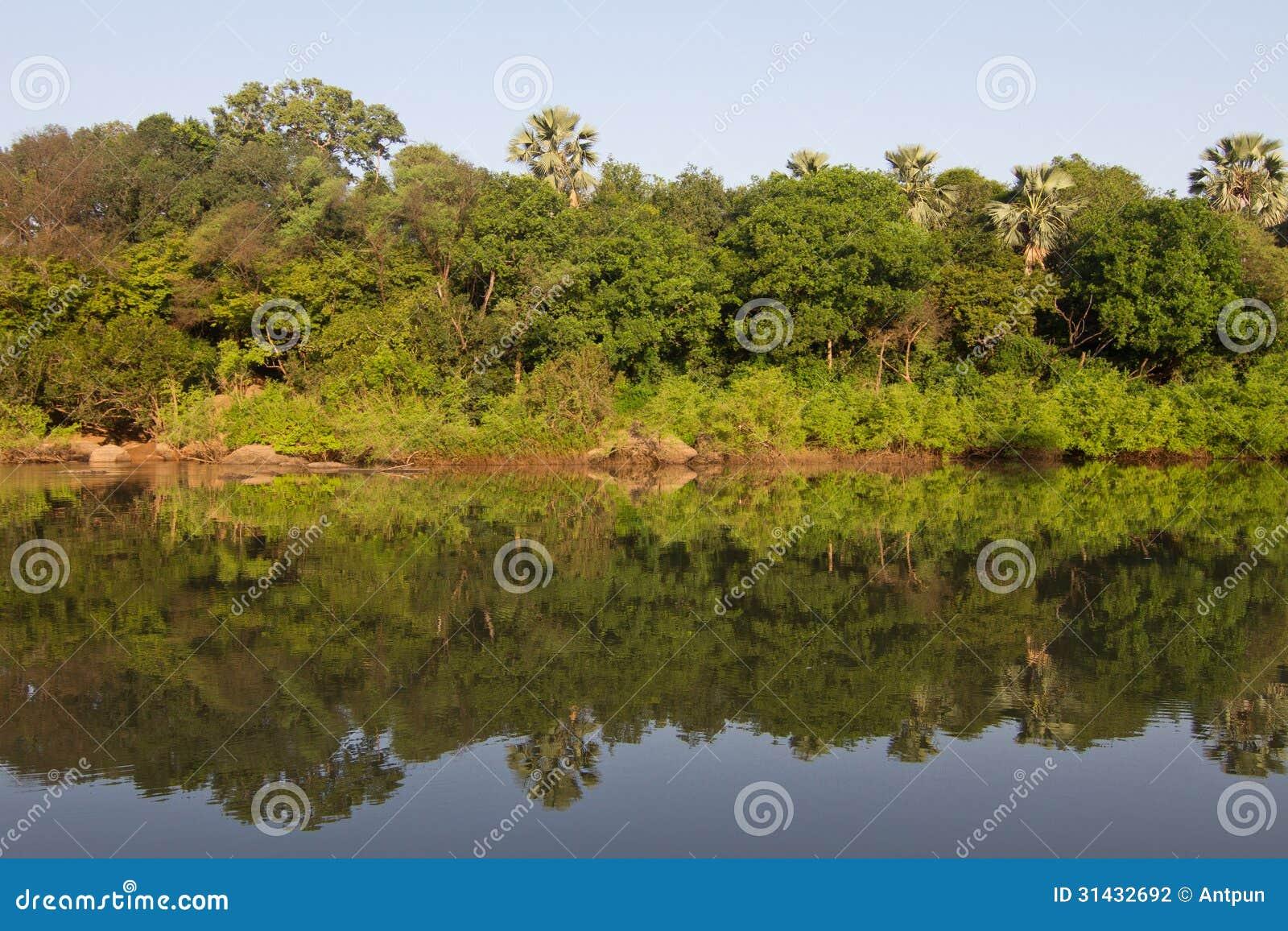 冈比亚河在Niokolo Koba